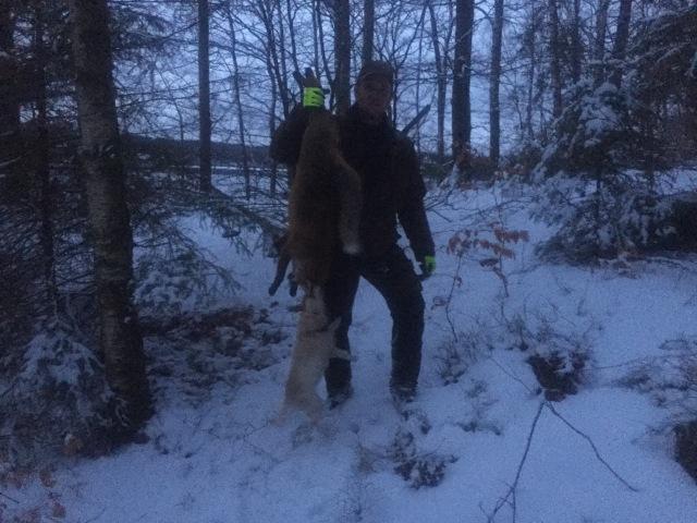 """Christian och """"Bea"""" med dagens tredje räv, skjuten i det sista ljuset."""